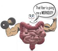 Strong Gut